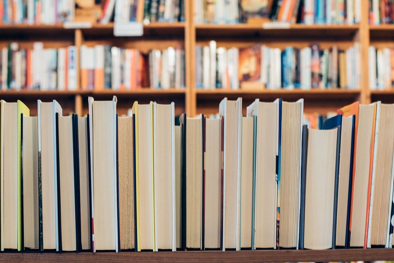 Gelesene Bücher Verkaufen So Erzielen Sie Den Höchsten Gewinn